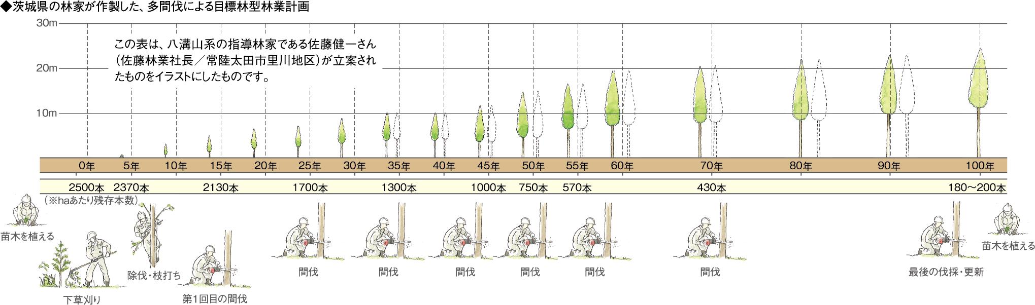 目標林型林業計画